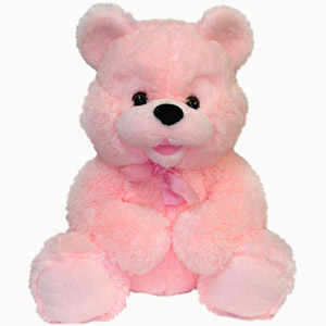 Teddy Bear Gift on Teddy Bear To Nikolaev  Ukraine  Flowers In Nikolaev   Flowers  Gifts