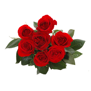 Bunch of 7 Roses
